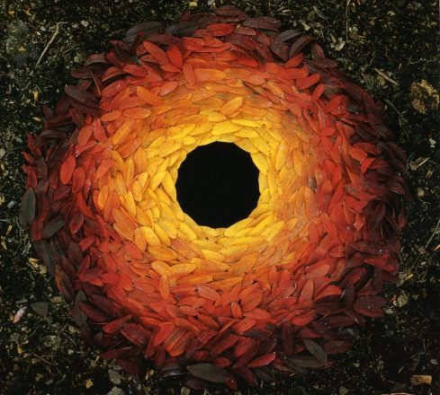 Rowan Leaves by Andy Goldsworthy