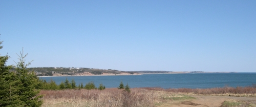 View from Cow Bay Road looking towards Lawrencetown