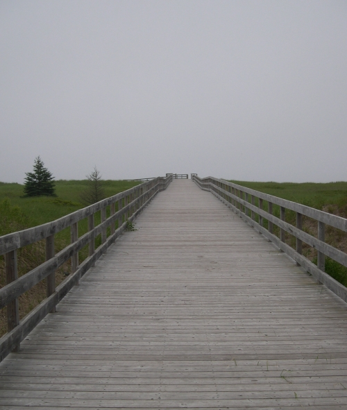 rainbow haven boardwalk
