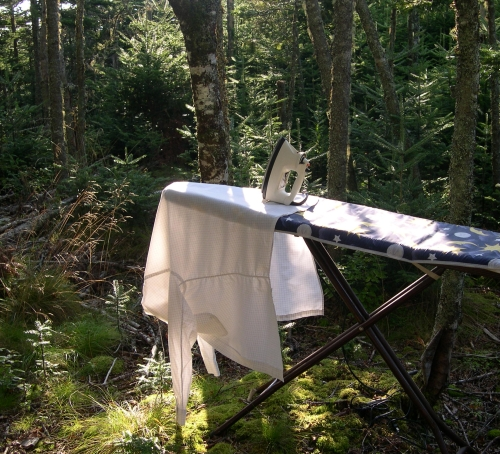 ironing in woods