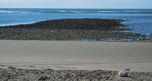 mussel bed at rainbow haven beach during low tide