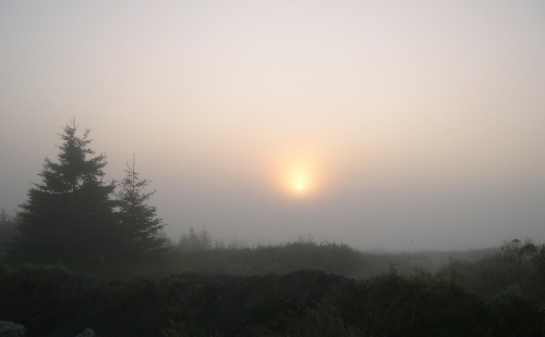 sunrise in fog