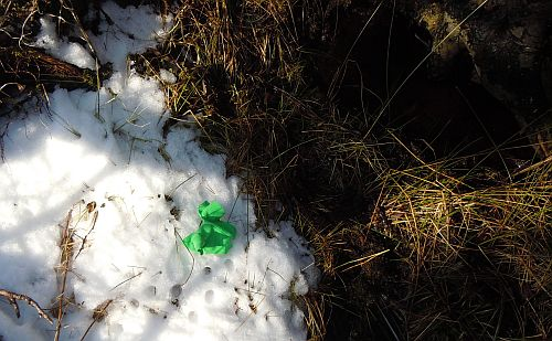 leprechaun jacket near vernal pool