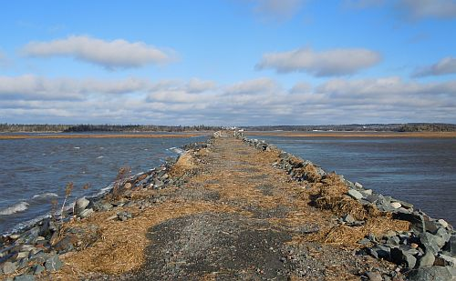 salt marsh trail between first two bridges