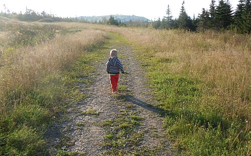 child walking on gravel road