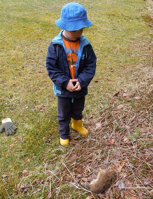 bunny burial